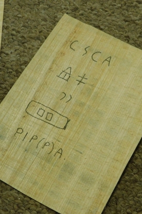 pippa-on-papyrus.jpg