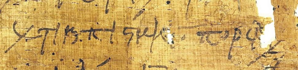 Image 4 - Close-up.jpg