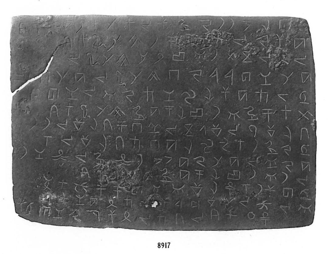 Tablet 8917 from Fouilles de Byblos II png